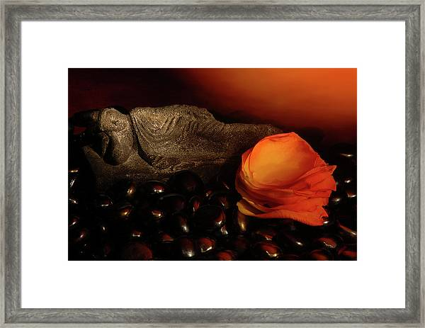 Scented Dreams Framed Print