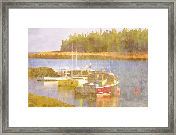 Schoodic Peninsula Maine Framed Print