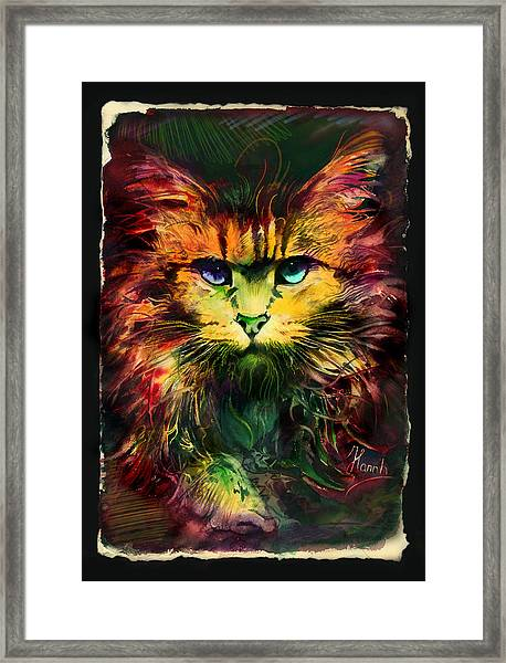 Schrodinger's Cat Framed Print