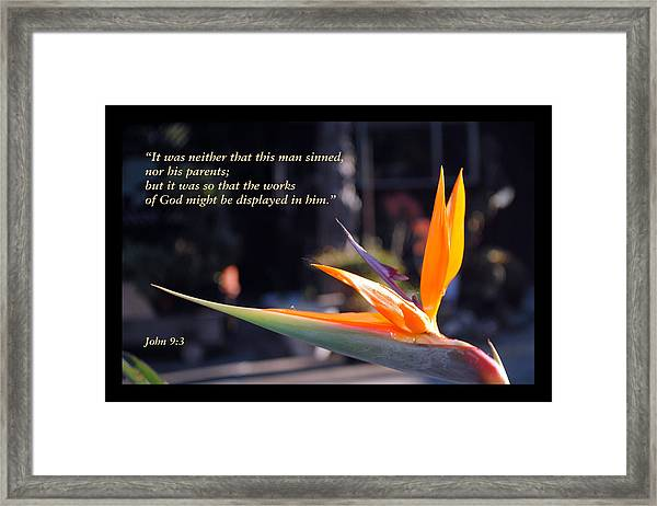 Scriptures Of Comfort 2 Framed Print