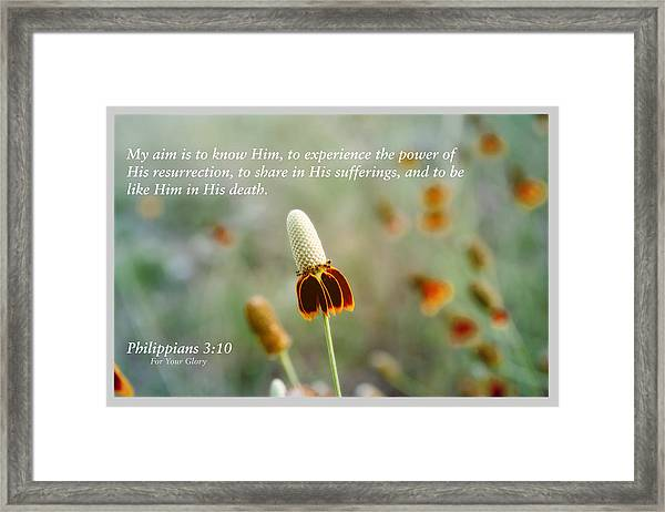 Scriptures Of Comfort 3 Framed Print