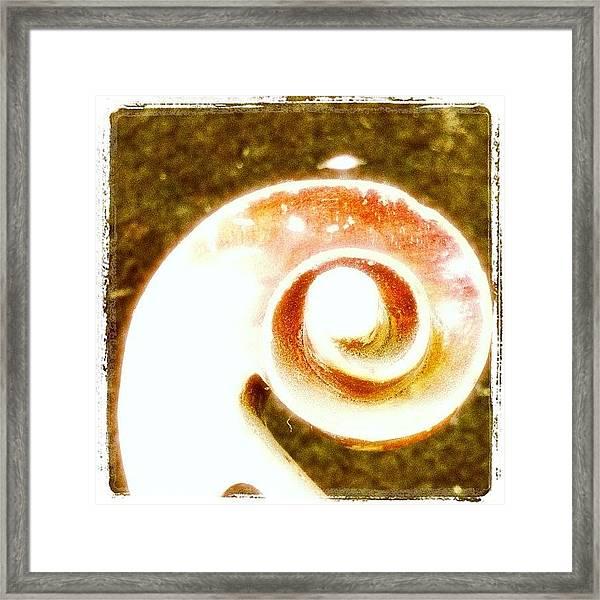 Scrollwork Framed Print