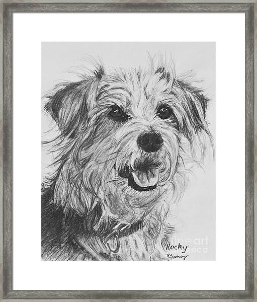 Scruffy Terrier Dog Drawing Framed Print