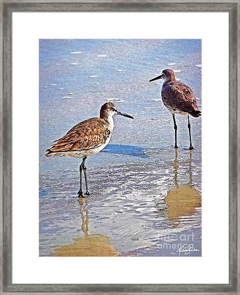 Sea Birds No.4 Framed Print