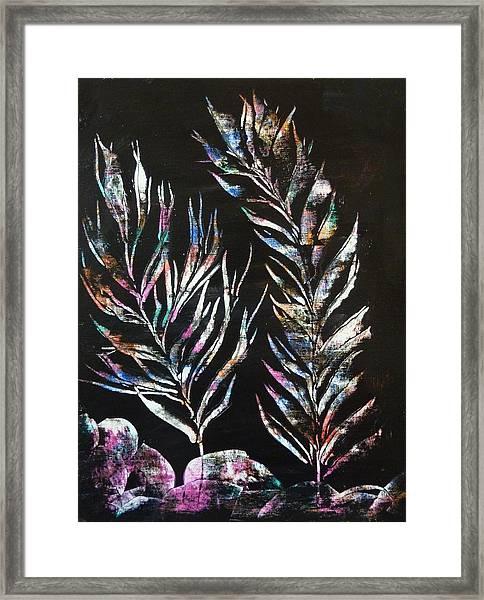 Sea Ferns Framed Print
