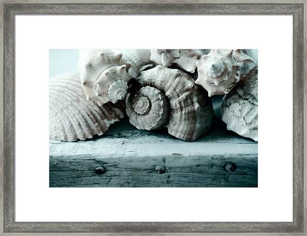 Sea Gifts Framed Print