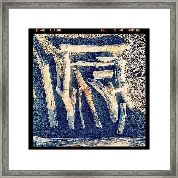 Sea Harvest Framed Print