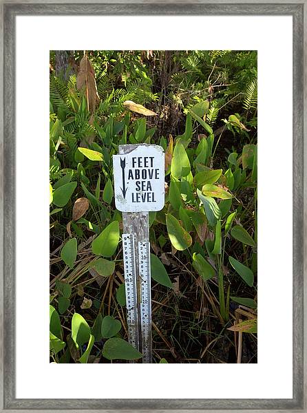 Sea Level Indicator Framed Print