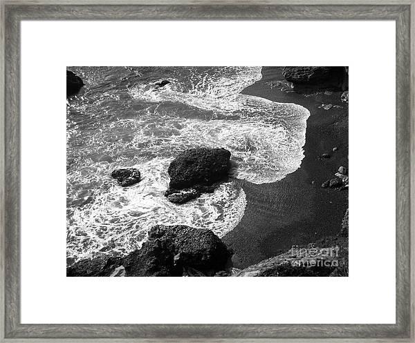 Sea Lion Cove Framed Print