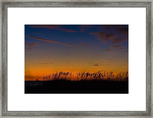 Sea Oats At Twilight Framed Print