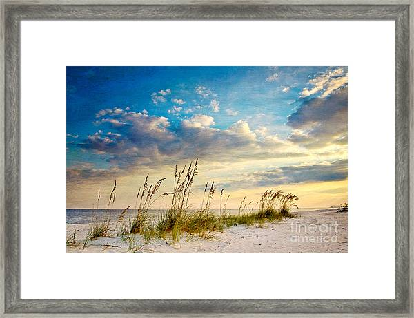 Sea Oats Sunset Framed Print