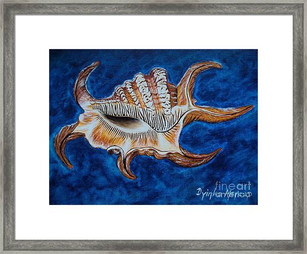Sea Shell Original Painting Oil On Canvas No.3. Framed Print by Drinka Mercep