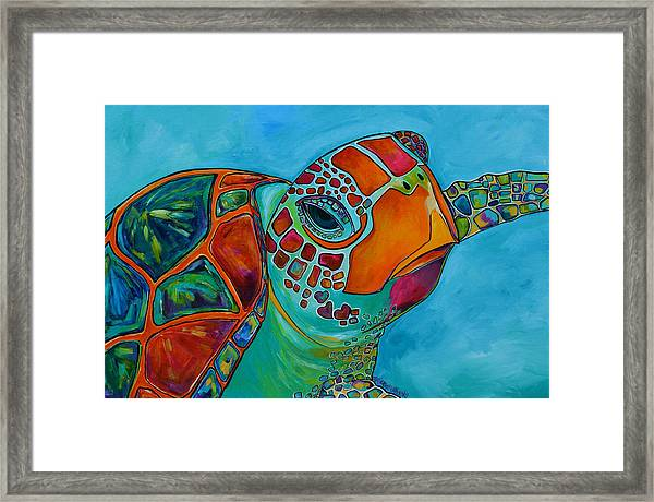 Seaglass Sea Turtle Framed Print