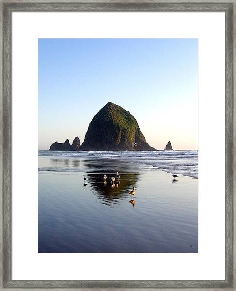 Seagulls And A Surfer Framed Print