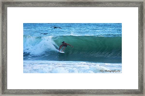 Seagulls Surfing Framed Print