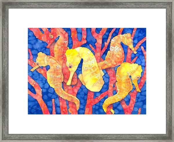 Seahorse Heaven Framed Print