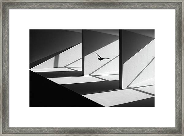 Searching Way Out Framed Print