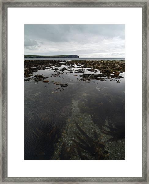 Seascape Framed Print by Steve Watson