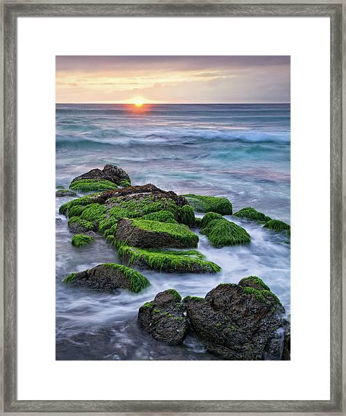 Seaweed, Granite And Blue Water Framed Print by Peter G Knott