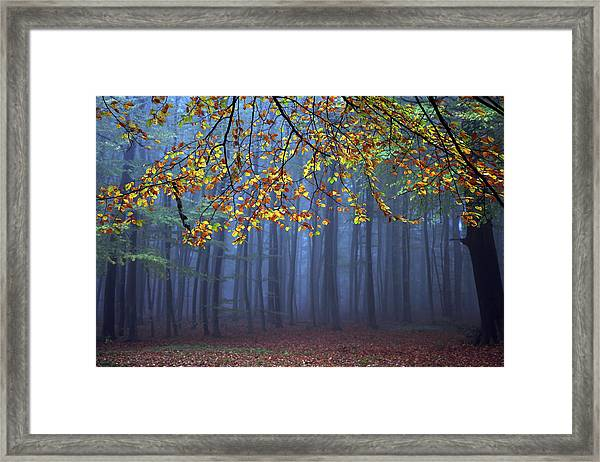 Seconds Before The Light Went Out Framed Print
