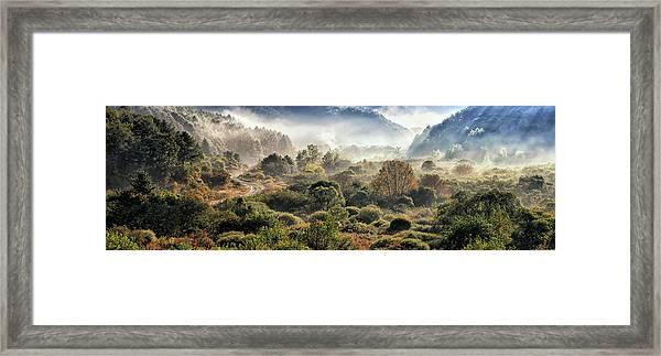 Secret Gargen Framed Print