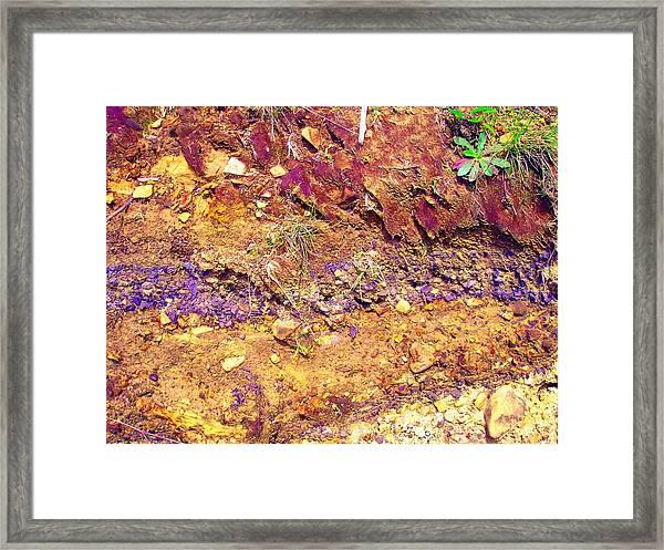 Sedimental Value Framed Print