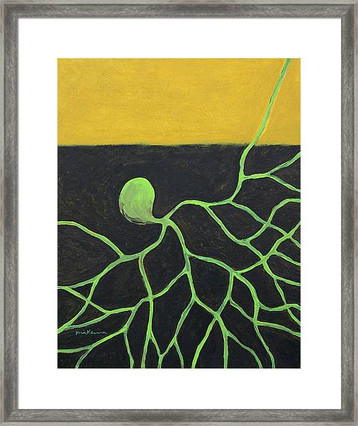 Seed Pulsation Framed Print