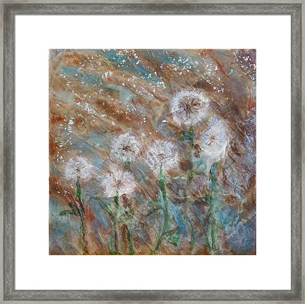 Seeds Of Spring Framed Print