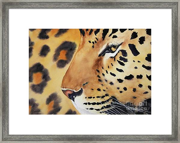 Seeing Spots Framed Print
