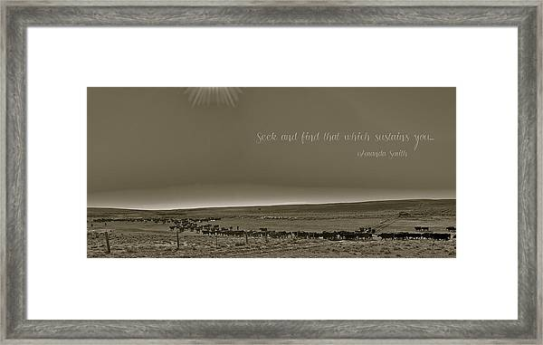 Seek And Find Framed Print