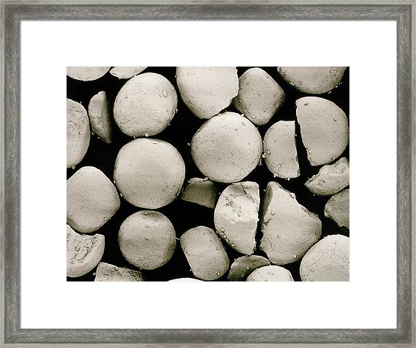 Sem Of Salt Crystal Framed Print
