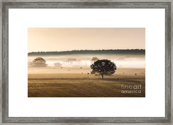 Sepia Landscape From 500 Feet Framed Print