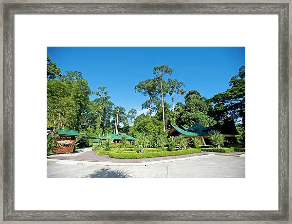Sepilok Rehabilitation Centre Framed Print
