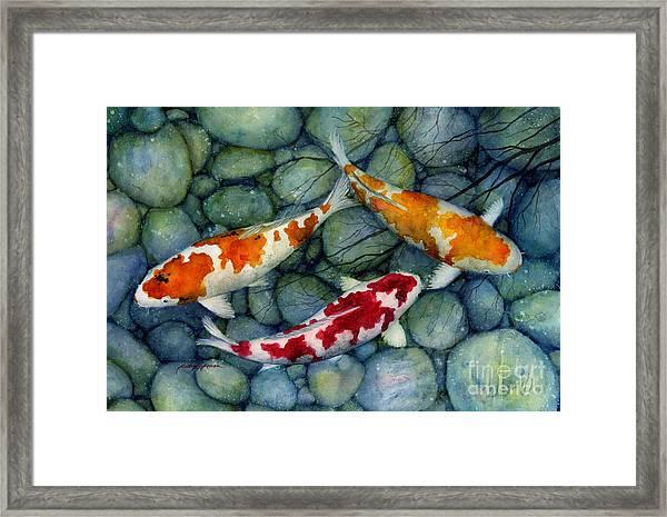 Serenity Koi Framed Print
