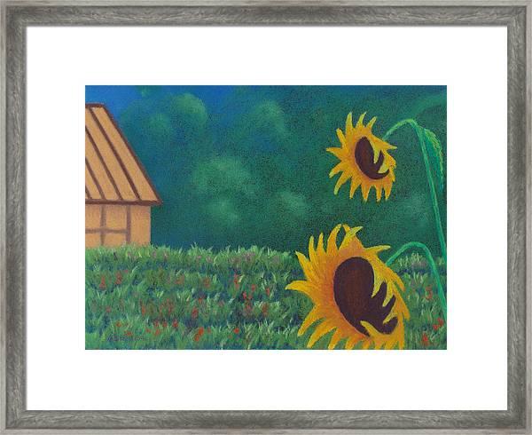 Sergi's Sunflowers Framed Print