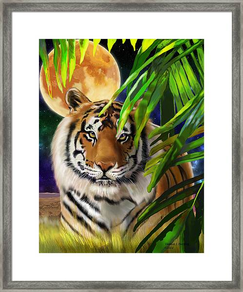 Second In The Big Cat Series - Tiger Framed Print