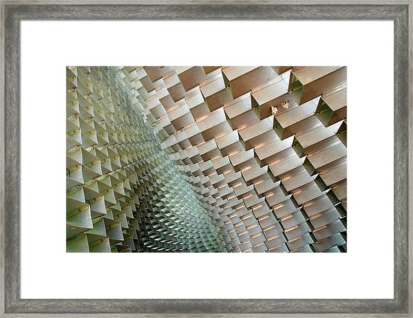 Serpentine Framed Print