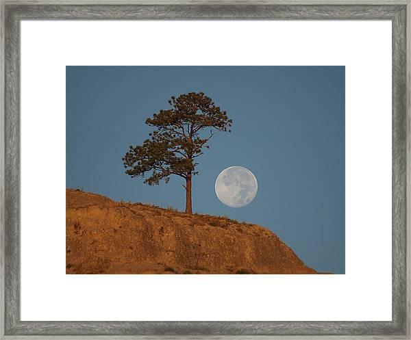 Setting Harvest Moon Framed Print