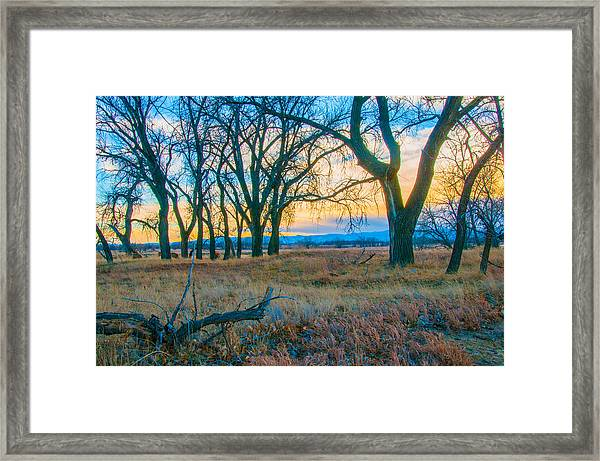 Setting Sun At Rocky Mountain Arsenal_1 Framed Print