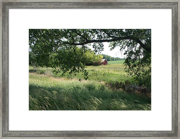 Framed Print featuring the photograph Shaded View - Full Color by Dylan Punke