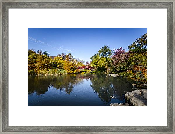 Shades Of Fall Framed Print