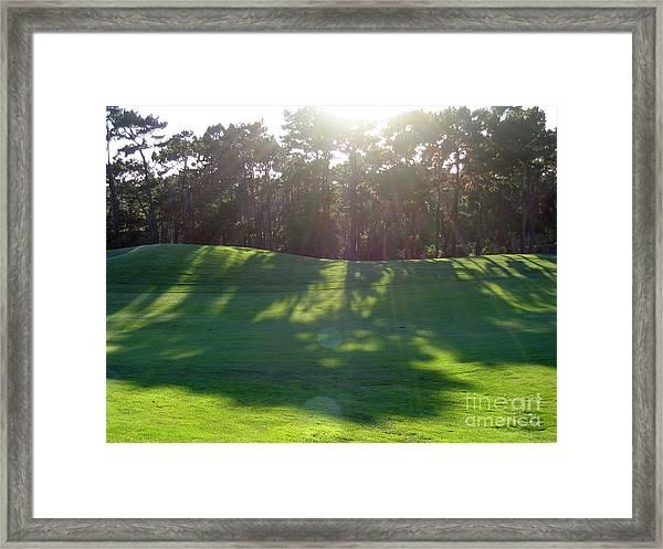 Shadows At Poppy Hills Framed Print