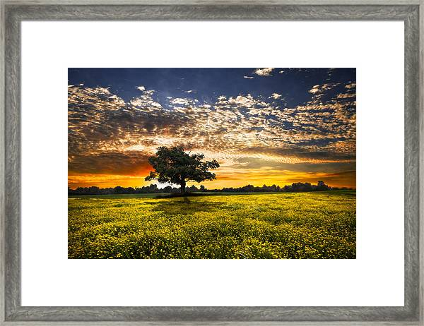 Shadows At Sunset Framed Print