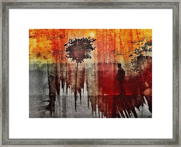Shadows (one Way) Framed Print by Dalibor Davidovic