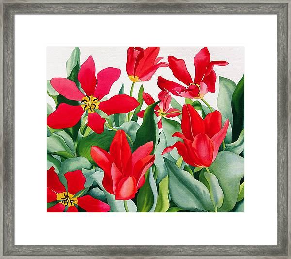 Shakespeare Tulips Framed Print