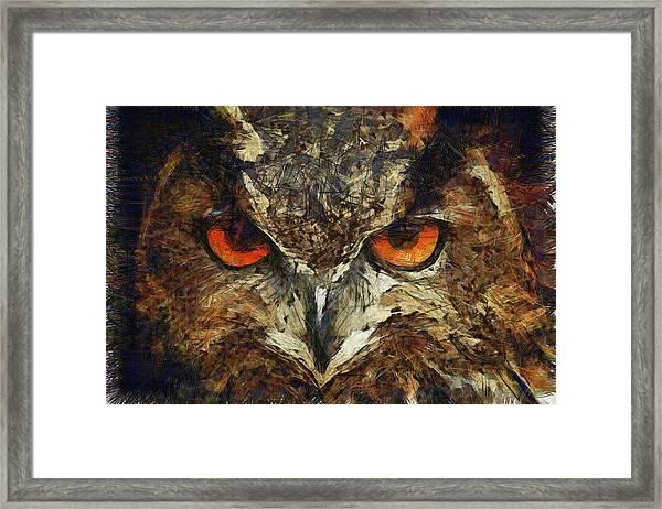 Sharpie Owl Framed Print