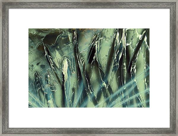 On The Rocks Framed Print