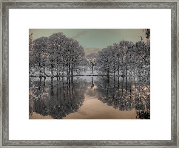Shaw Nature Reserve Framed Print