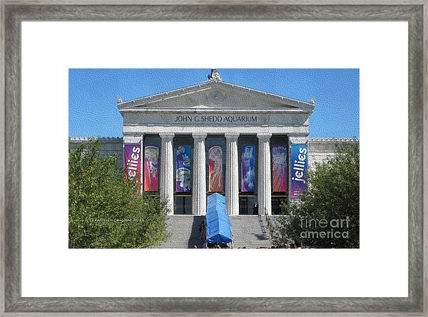 Shedd Aquarium-1 Framed Print