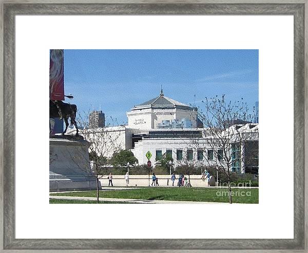 Shedd Aquarium-2 Framed Print